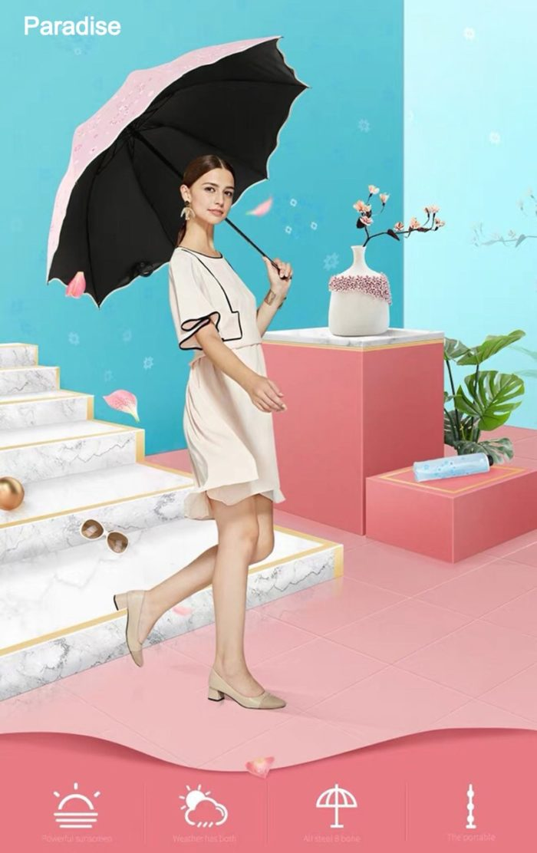 Compact Umbrella Windproof Brolly