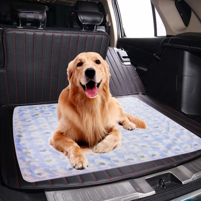 Pet Blanket Soft Warm Fleece