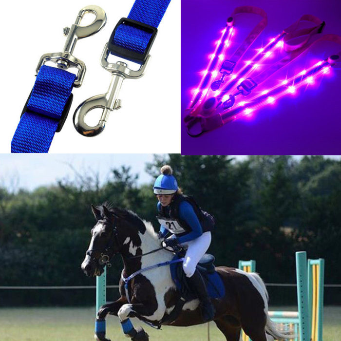 Horse Harness with LED Light
