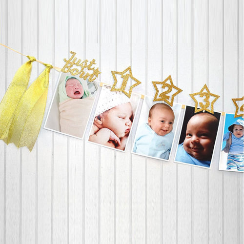 Photo Banner Picture Frame
