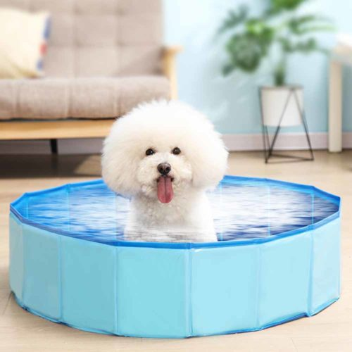 Dog Swimming Pool Foldable Bathtub