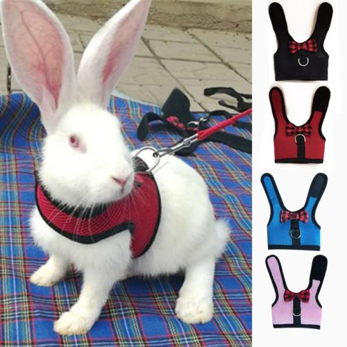 Rabbit Harness Pet Leash