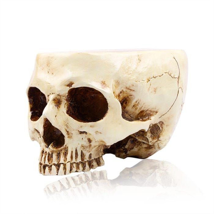 Skull Decor Resin Sculpture