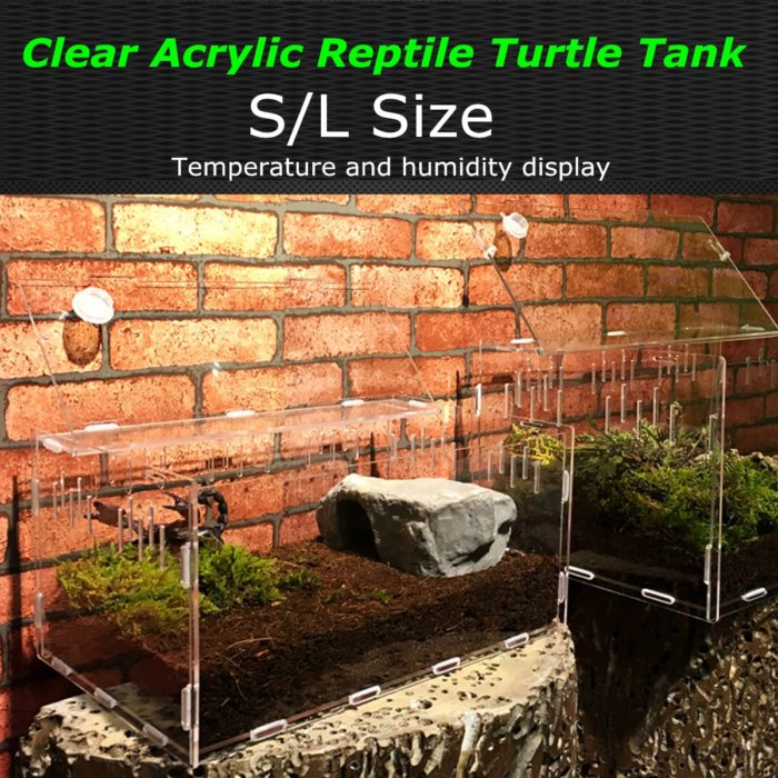 Reptile Tank with Temperature Display