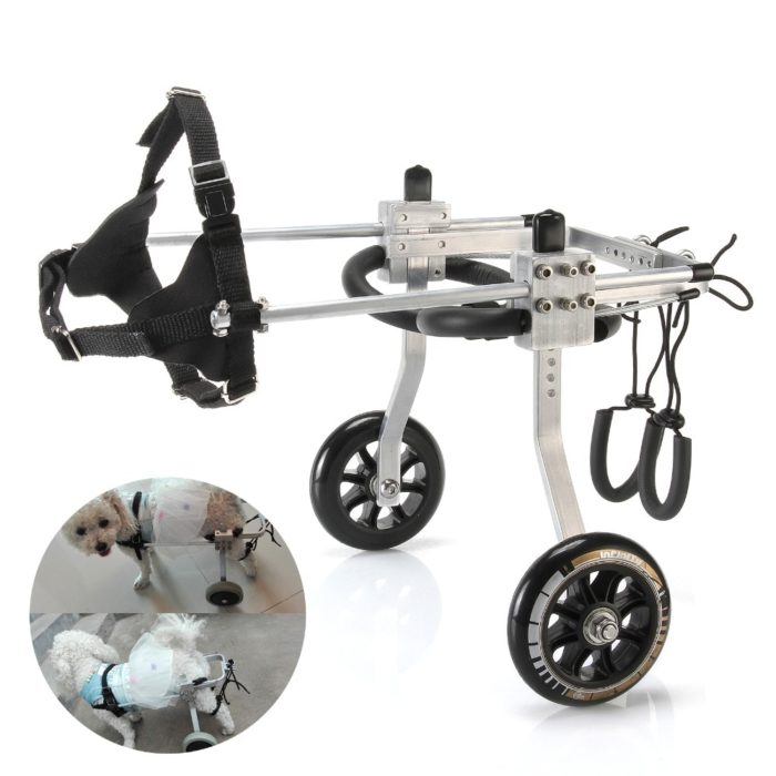 Wheels for Dogs Pet Needs
