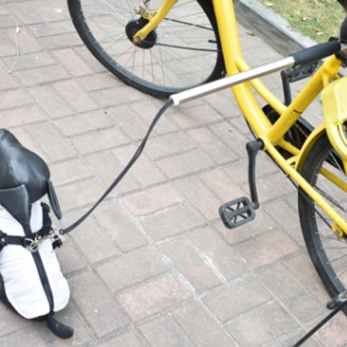 Dog Bike Leash Pet Accessory