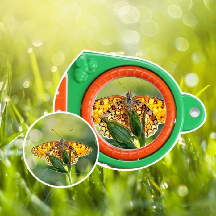 Bug Box Insect Catching Tool
