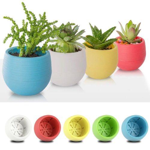 Small Plant Pots Succulent Planter