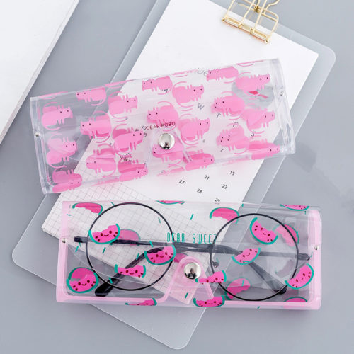 Eyeglass Case Eyewear Protection