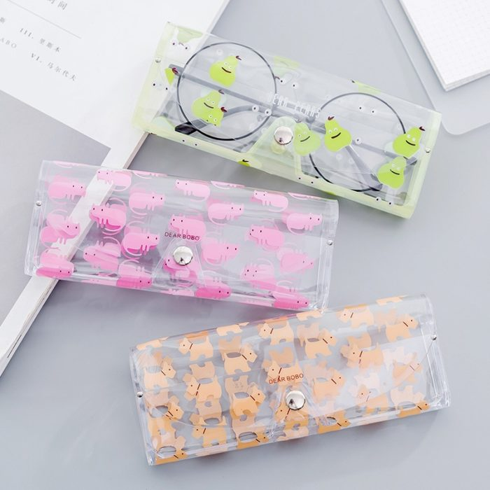Eyeglass Case Eyewear Protection