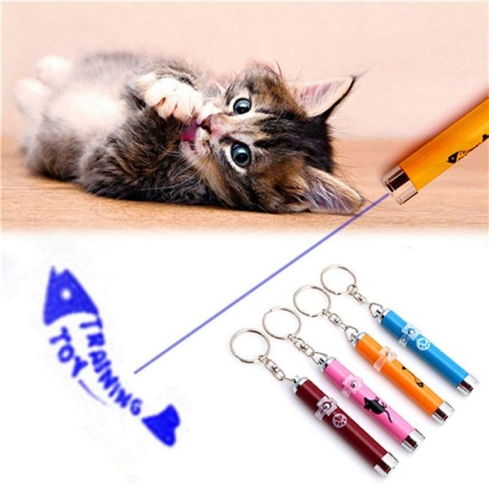 Cat Laser Pointer Pet Accessory