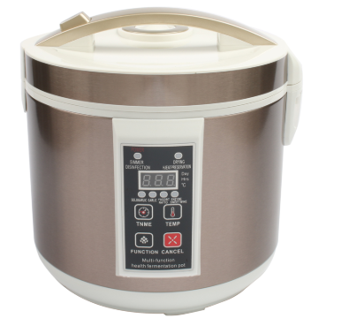 Black Garlic Fermenter Kitchen Device