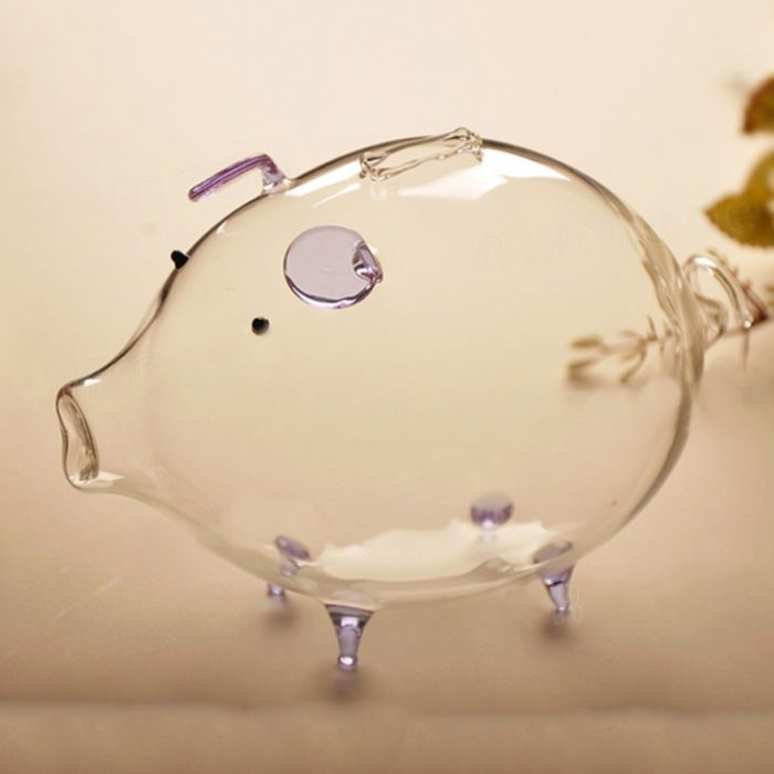 Glass Piggy Bank Coin Jar