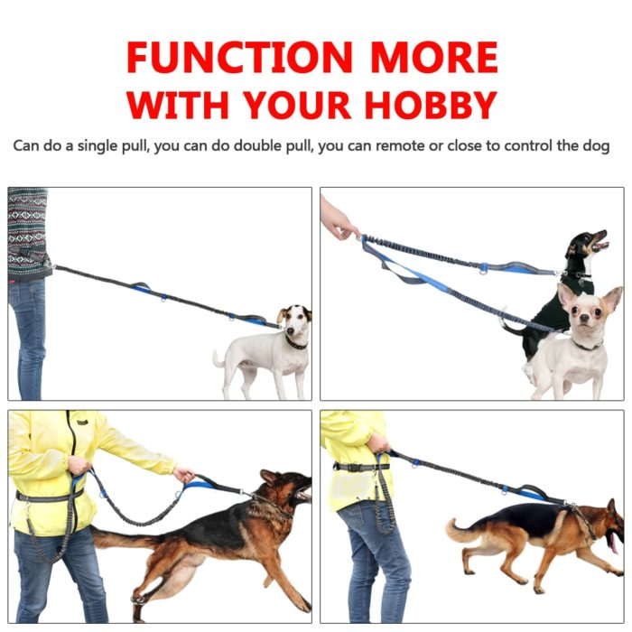 Hands Free Dog Leash Reflective