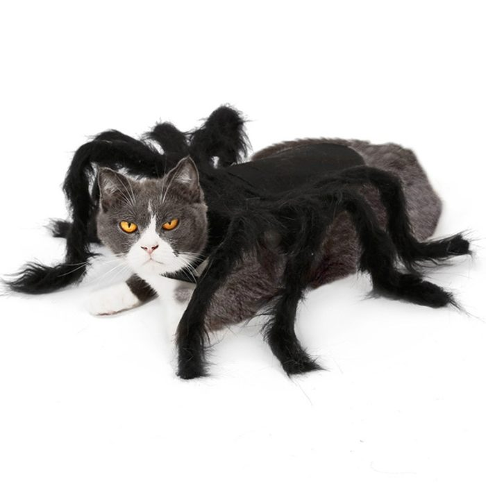 Dog Spider Costume Pet Accessory