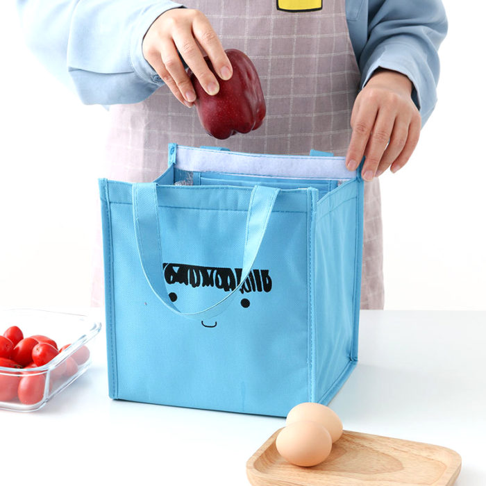 Kids Insulated Lunch Bag Thermal Pouch