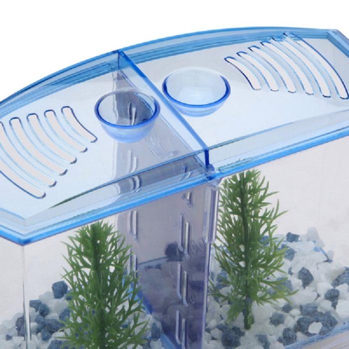 Fighting Fish Tank Pet Accessory