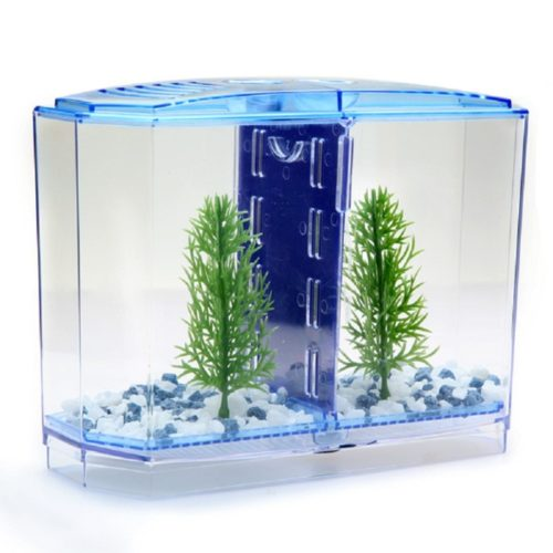 Fighting Fish Tank Pet Accessory