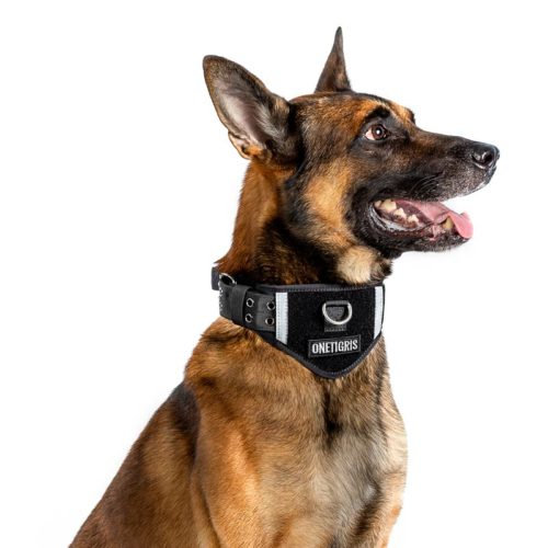 Tactical Dog Collar With Patch Space