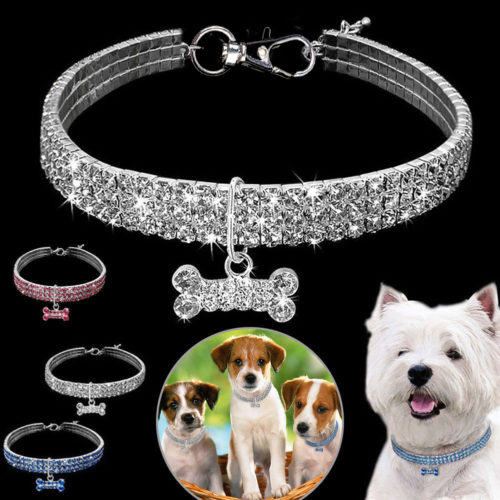 Dog Necklace Pet Accessory