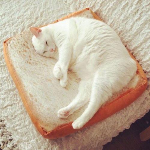 Bread Pillow Soft Plush Cushion
