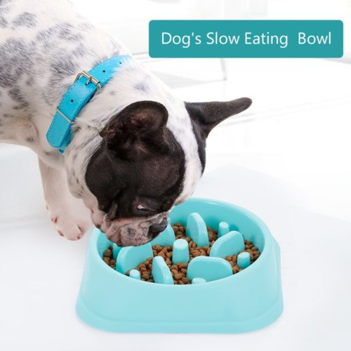 Slow Eating Dog Bowl Choking Prevention
