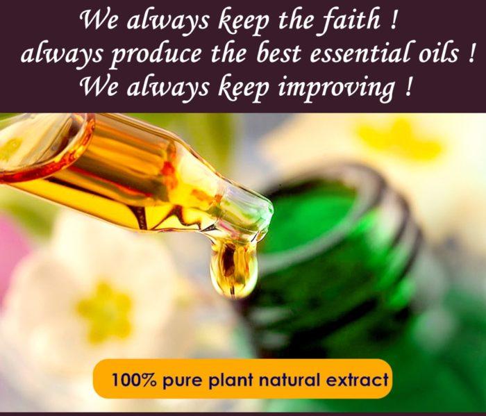 Citronella Oil Plant Essential Oil