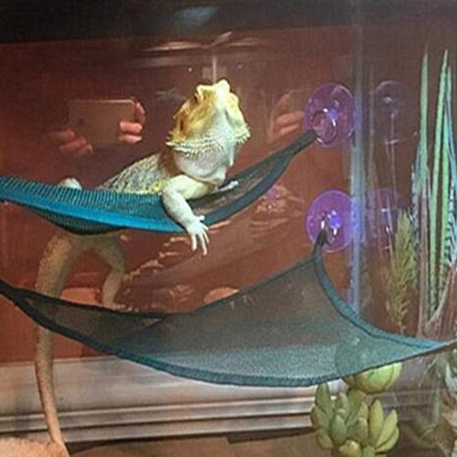 Reptile Hammock Lounger Ladder