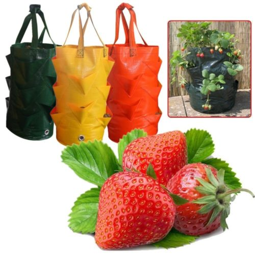 Grow Bag for Plants Vertical Planter with Strap