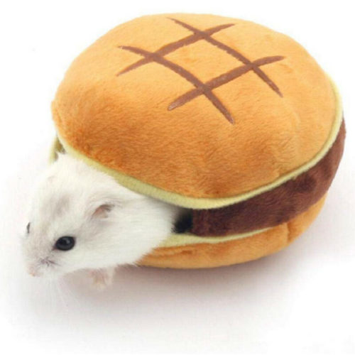 Guinea Pig Bed Burger Design