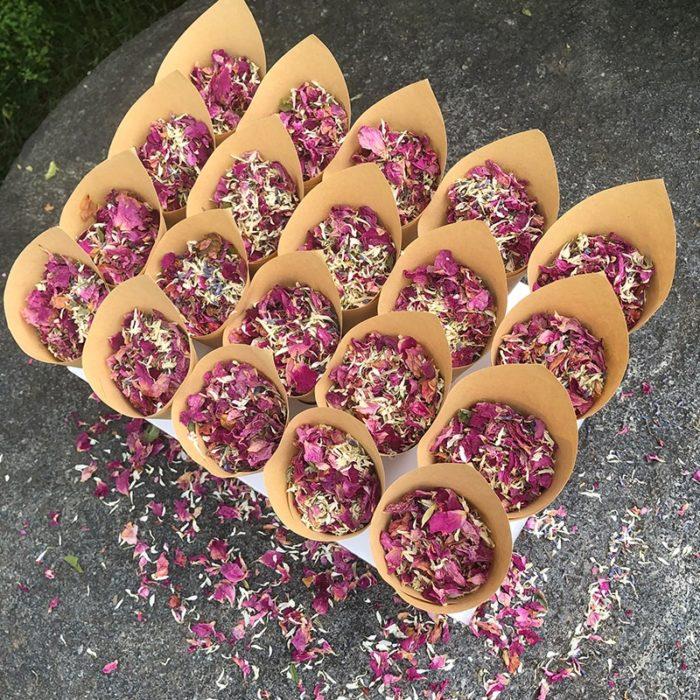 Confetti Cones 20PCS with Tray