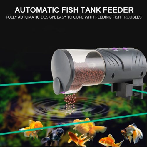 Auto Fish Feeder with Timer
