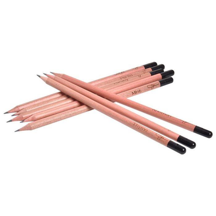 Sprout Pencil Growing Pencil (8pcs)