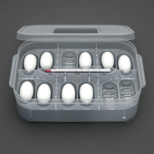 Reptile Egg Incubator 12-Slot Box
