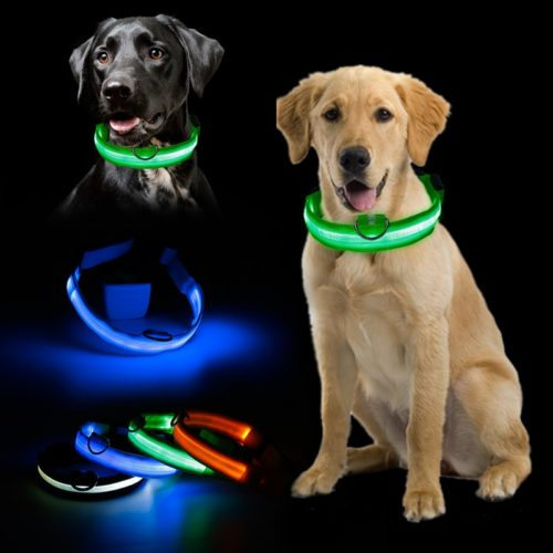 Glowing Dog Collar LED Safety Leash