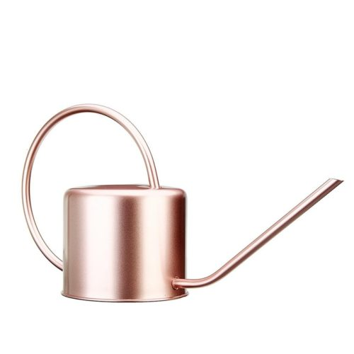 Indoor Watering Can Metal Water Can