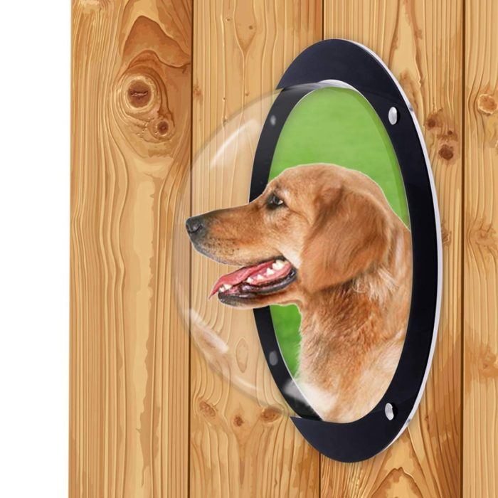 Dog Fence Window Bubble Dome