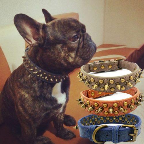 Spiked Dog Collar Cool Pet Collar