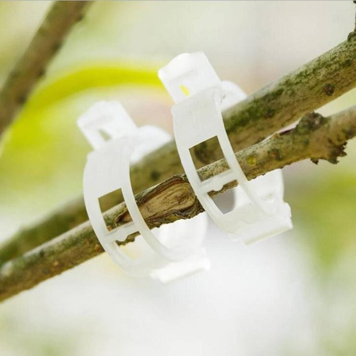 Plant Clips 50PCS Gardening Accessories