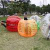 Human Bubble Ball Inflatable Bump Ball