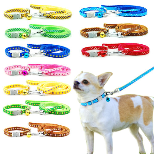 Collar and Leash for Small Pets