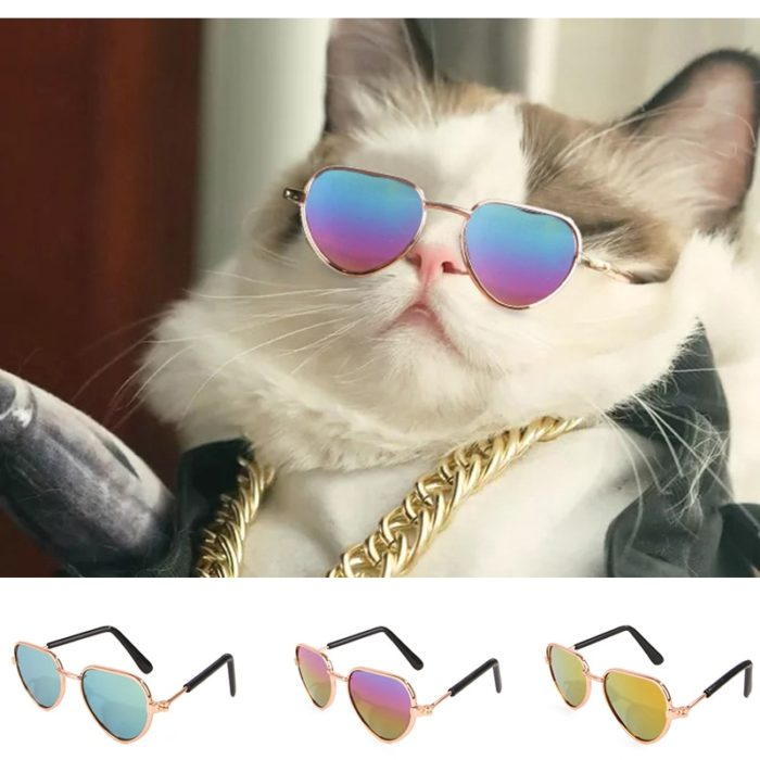 Sunglasses for Cats Pet Accessory