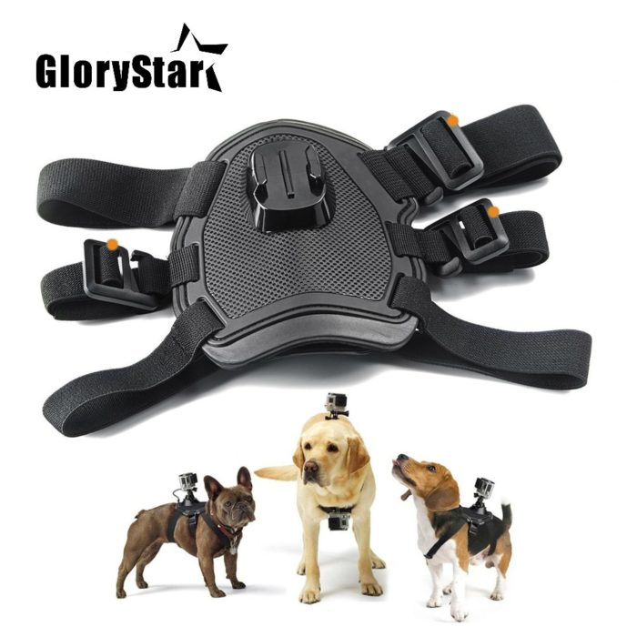 GoPro Dog Harness Camera Mount