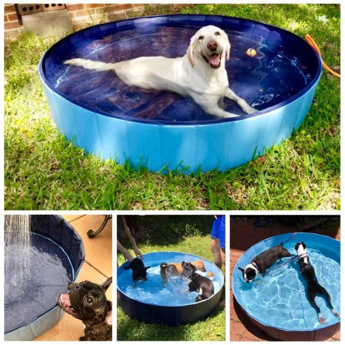 Plastic Dog Pool Collapsible Bath Tub
