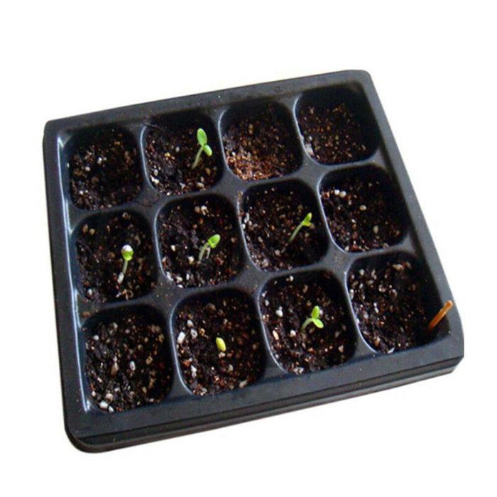 Propagation Kit Gardening Tool