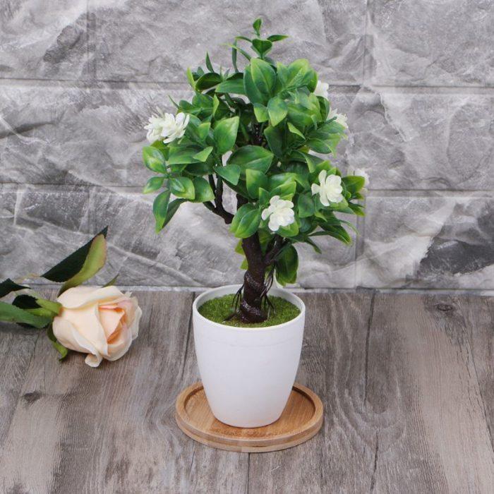 Plant Saucer Bamboo Mini Dish