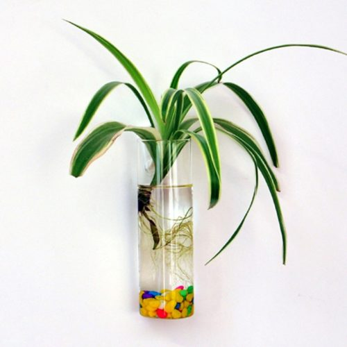 Hanging Wall Vase Glass Container