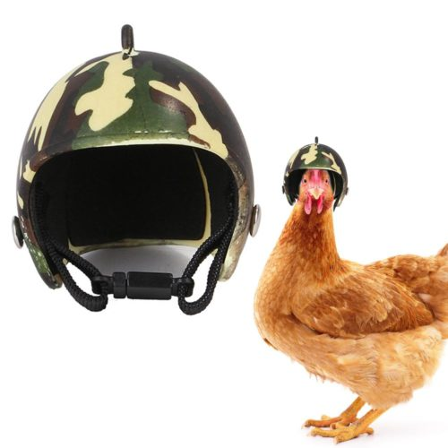 Chicken Helmet Head Protection Gear
