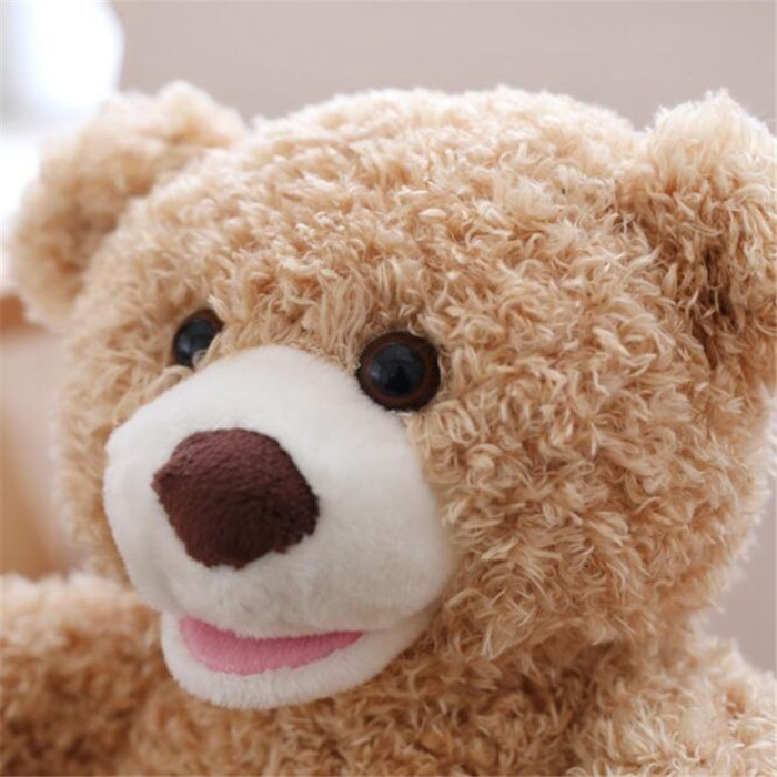 Peek A Boo Teddy Bear Toy