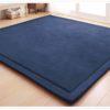 Thick Carpet Multipurpose Mat